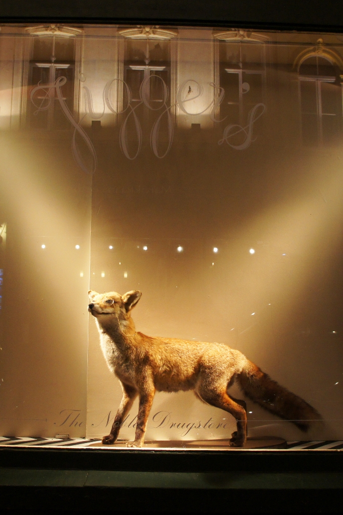 Stuffed fox with eyeglass in the Jigger's window (photo by Diva in the Dark)